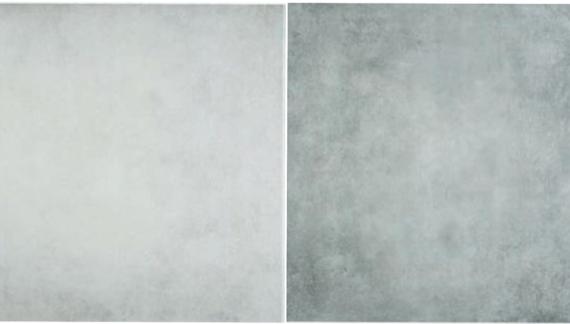 Artico gris /perla