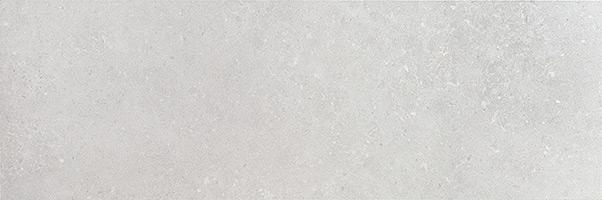 SPIRIT-SILVER-30×90